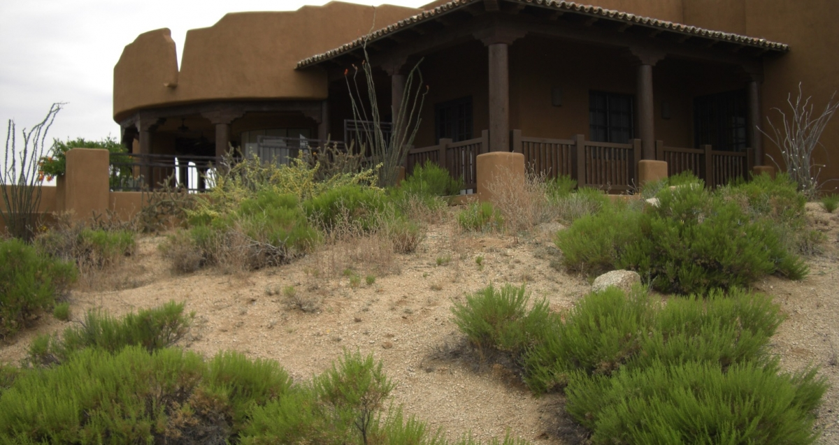 An arid climate can be beautiful, like this xeriscape design. Phoenix - Scottsdale services by Desert Crest.