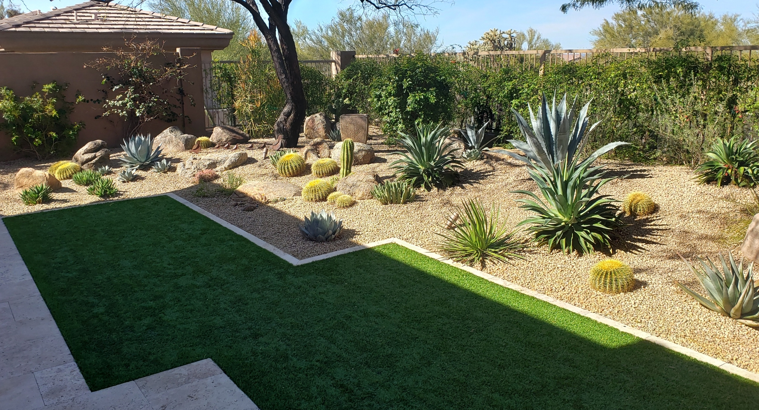 Don't sacrifice beauty trying to get Phoenix-Scottsdale landscaping that costs less. Downgrading to cheaper plants isn't the answer.