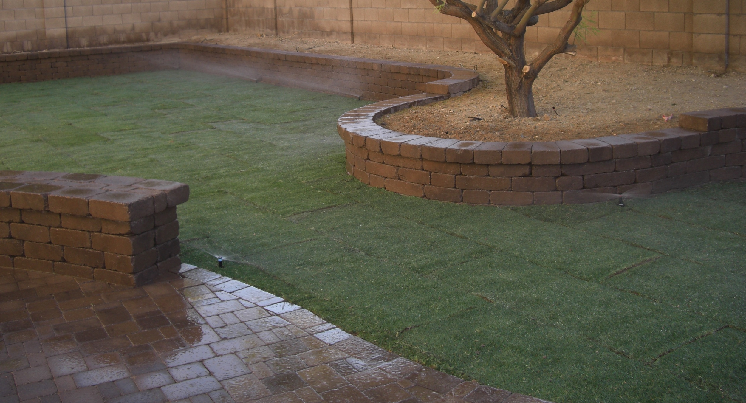 Even with low water needs desert landscaping you need Scottsdale irrigation. And if you want Arizona grass in Phoenix, sprinklers are need to keep it lush.