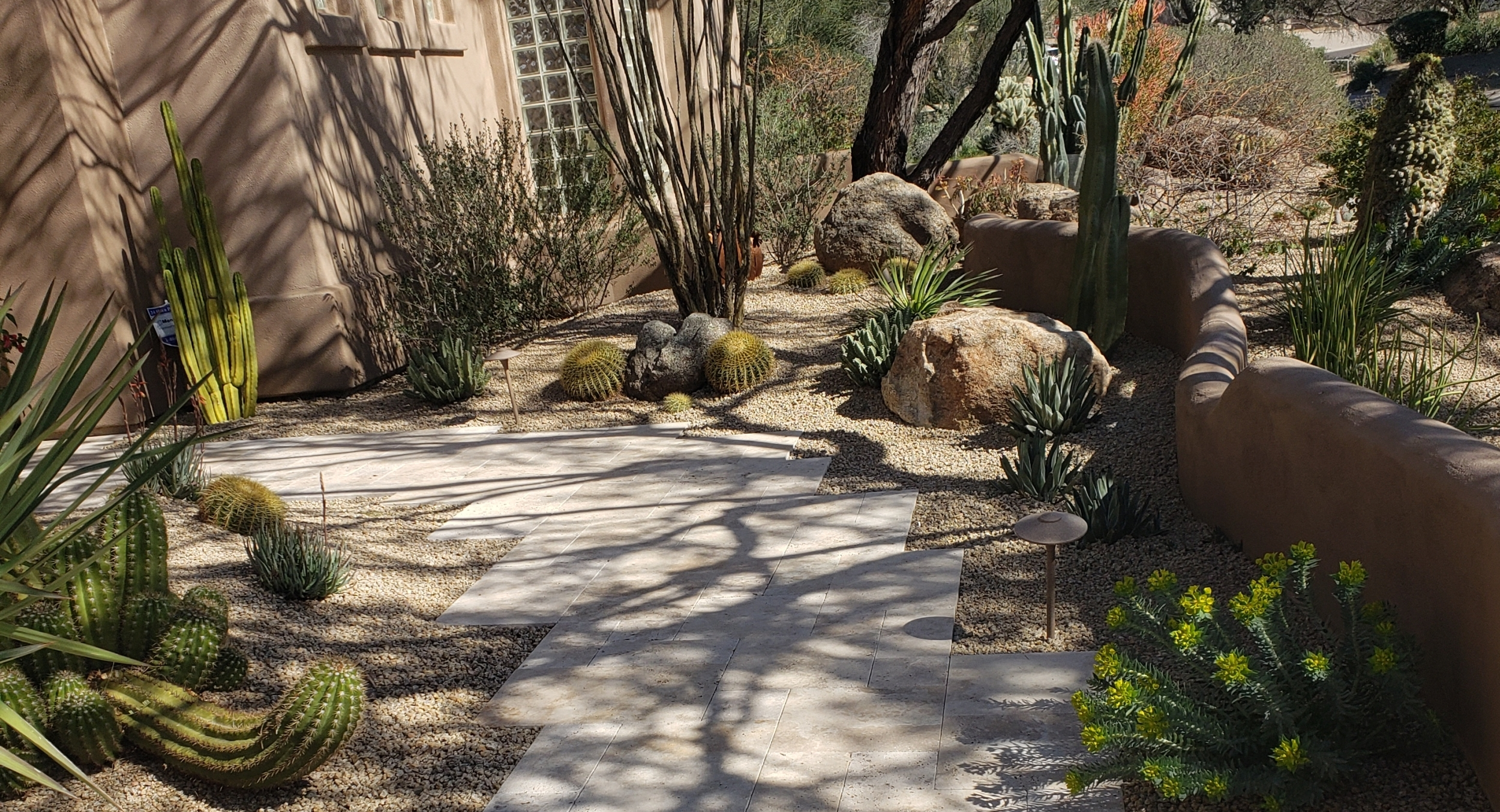 Getting the most benefit and beauty from any part of your yard landscape design, Phoenix and Scottsdale homeowners. Carefully chosen cacti and succulents make traveling along this travertine walk a lovely experience.