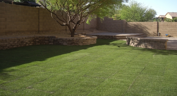 The best Phoenix lawns are easy to keep green. We installed a large grass area next to the patio in this backyard.